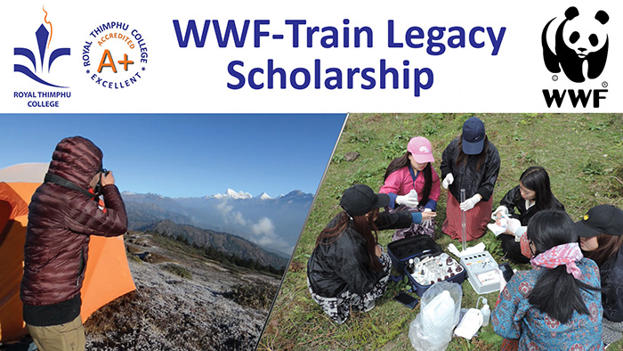 WWF Train Legacy Scholarship 2019